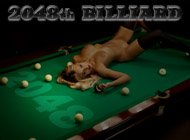 2048th Billiard adult game