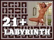 21Labyrinth adult game