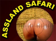 Assland Safari adult game