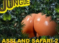 Assland Safari-2 adult game