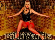 BilliYards adult game