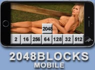 2048 Blocks Mobile adult game