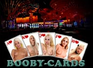 Booby-Cards adult game