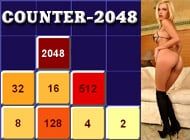 Counter-2048 adult game