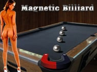 Magnetic Billiard adult game