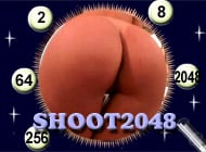 Shoot 2048 strip game